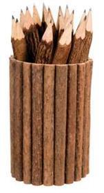 tempat-pensil-dari-ranting-kayu