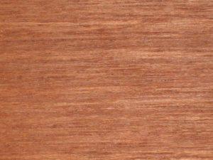 kayu matoa